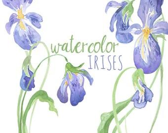 Watercolor Irises Clip Art, Iris artwork, Watercolor Iris, Digital Easter graphics, Easter flowers, Southern flowers, Iris Clipart