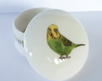 Small Budgie Trinket Box