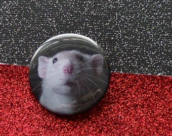 Rat Button Patch Sweet Faced Masked White Dumbo Rat - Pinback Button -Original Photo