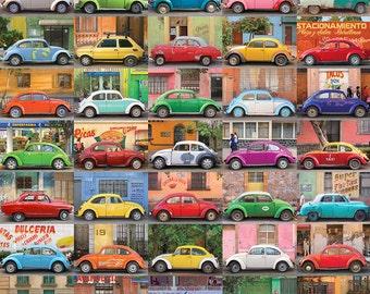 MUCHOS AUTOS Fine Art Travel Photography Print 11 x 14 Inches