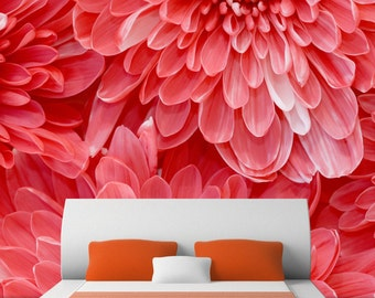 RED FLOWER BURST photography wall mural - Self adhesive removable & repositionable wallpaper - Interior decor by GraphicsMesh