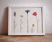 FIVE flowers - illustration giclee 24x30cm