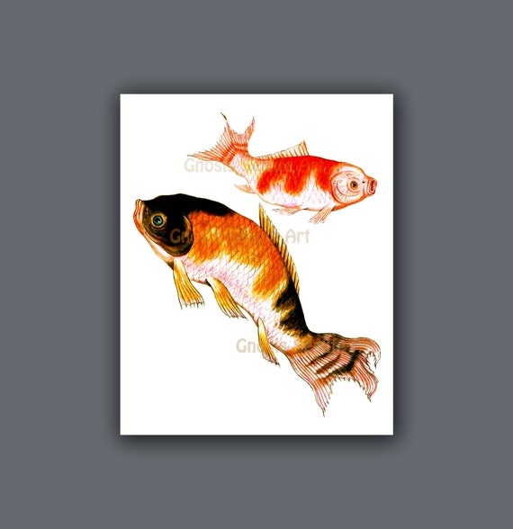 Antique fish art koi fish wall art print 11 symbol for love for Koi fish wall decor