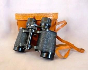Vintage Skyline Binoculars and Case