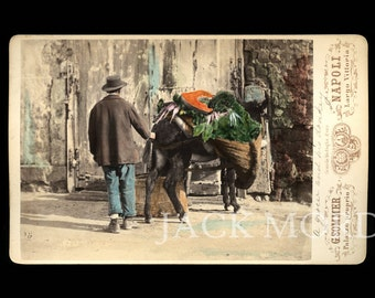 Rare Occupational 1870s Color Photo ~ Italian Grocer & Donkey by Sommer