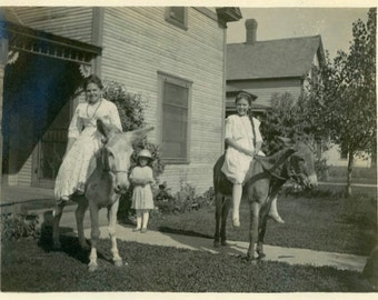 "Vintage Photo ""The Donkey Sisters"" Animal Pet Mule Farm Girl Snapshot Photo Old Antique Black & White Photograph Found Paper Ephemera - 173"