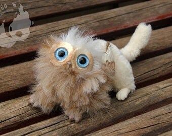 PREORDER - Custom domestic gryphon kitten . made to order