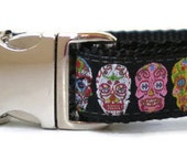 dog collar - sugar skull medium dog collar - day of the dead dog collar - Dia de los Muertos summer dog collar - colourful skulls dog collar