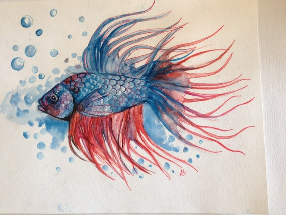 Original betta fish watercolor painting betta fish by for Betta fish painting
