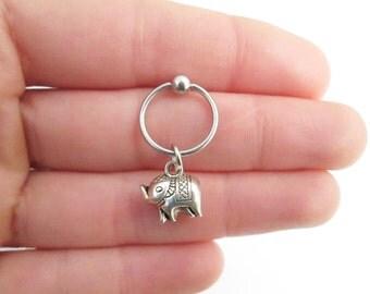 Elephant helix rook piercing