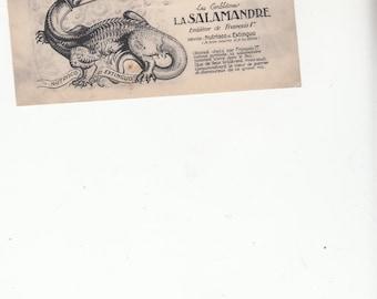 Early Blois French Postcard Chateau Louis XiI Royal Emblem La Salamandre Unused