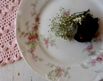 Antique Theodore Haviland. Limoges France China Plate. Pink Blossoms. Greenery. Cake Plate. Dessert. French Romantic Chic Wall Decor.