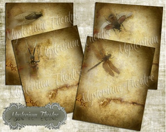 Digital Journal Papers Bug Collection