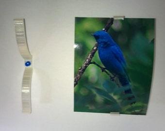Push Pin Photo Frame (4x6 Photos)