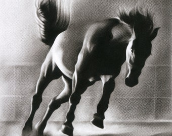 Horse Animal Fine Art Limited Edition Print Of An Original Oil Painting Drawing By Artist Signed Realism