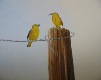 YELLOW WARBLER PAIR, Bird Art, Print From My Original Acrylic Painting