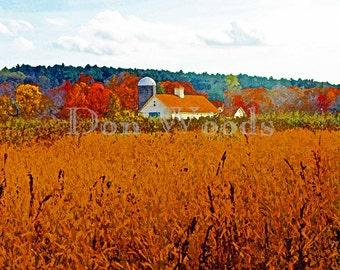 Farm Field / Minuteman National Historic Park / Concord, Massachusetts