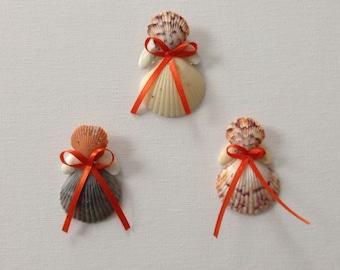 Seashell Angels