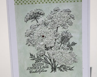 Queen Anne's Lace Greeting card with 3D embelishments