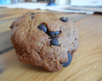Dog Treat Carob Chip Cookie- Homemade