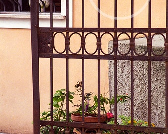 Iron Gate with Pots