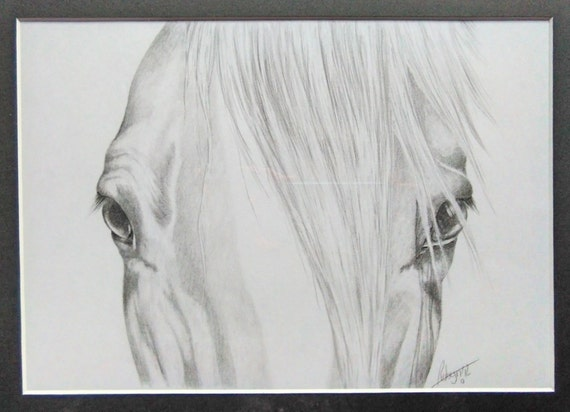 Articoli simili a original graphite pencil drawing horse for Disegni di cavalli a matita