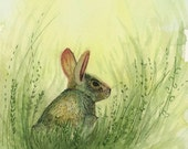 Original Cute Rabbit Watercolor 5x7