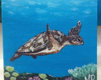 Original Sea Turtle Painting