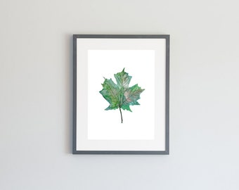 Hand Painted Watercolor Archival Giclée Print -Maple Leaf