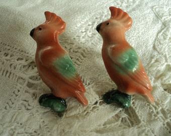 Ceramic parrots