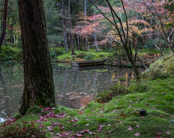 "Moss Garden Pond - ""Zen Lake"" - Fine ArtPhotograph  (9.5"" x 13.25"" Print on 14"" x 18"" Board)"