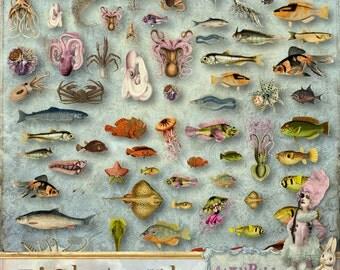 itKuPiLLi - FishTank - 3 x Digital Collage Sheet ATC png - Printable, Instant download