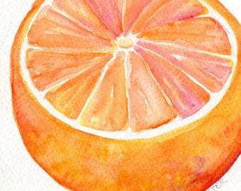 Grapefruit Watercolor Painting, Original Fruit ART, 5 x 7
