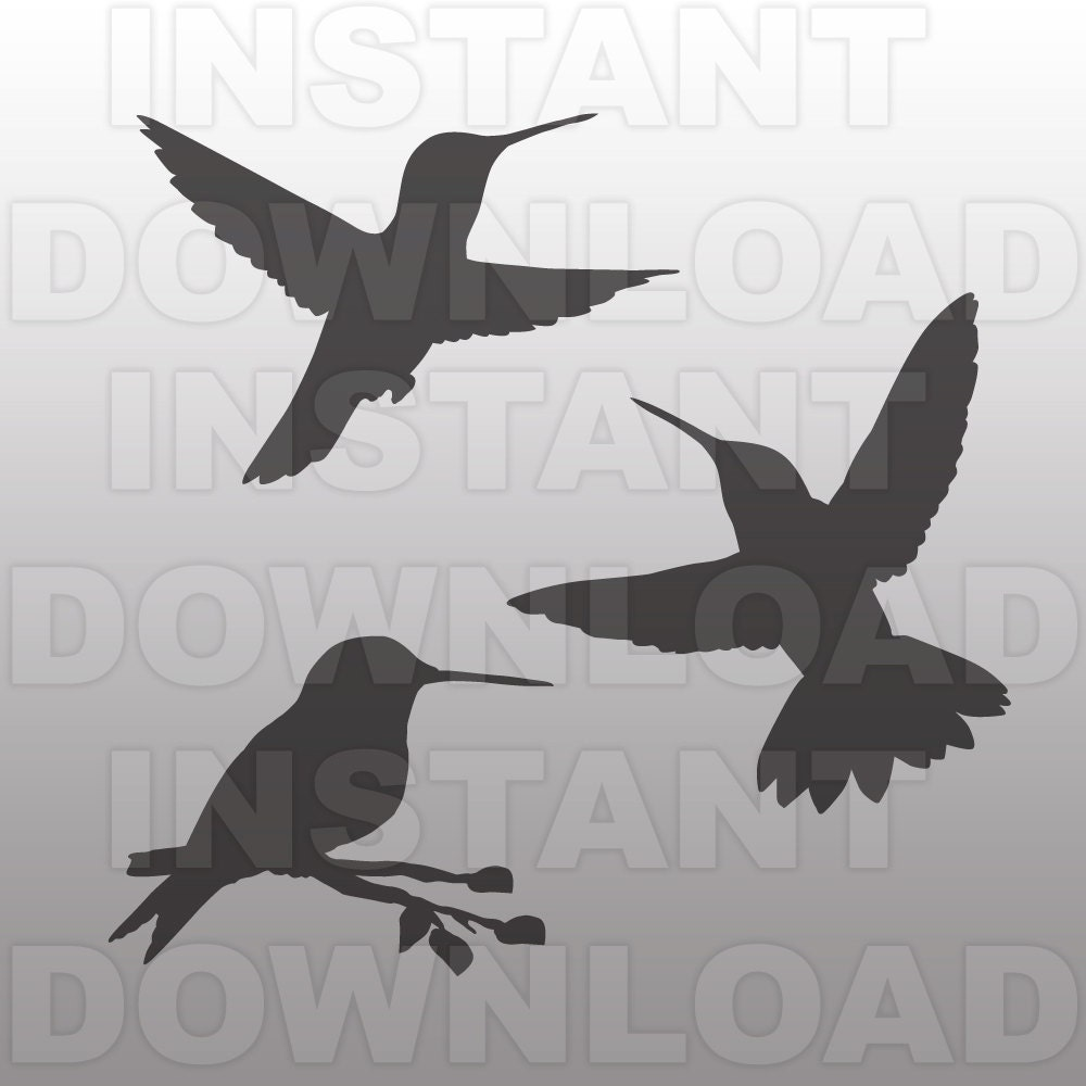 Hummingbirds Svg Filecutting Template Vector Clip Art For