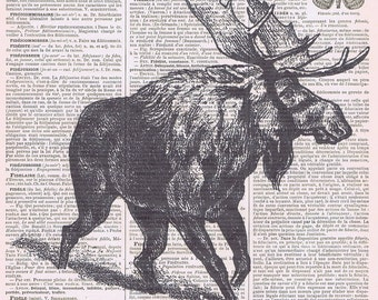 Moose.Antique,birthday.forest Animal,Antique Vintage Book Pages .Gift,Paper.altered art,inspiration, freebie.deco.french.dad.sweet.child.eco