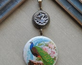 50% Off, Antique Button Locket Necklace- Colorful Peacock with Pink Roses