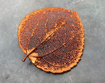Real Leaf Brooch/Pin and Pendant - Copper - Aspen