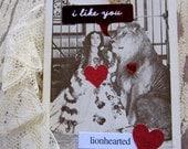 Valentine Tag, Love Tag, Funny Valentine,  Love, I like you, Lion, Heart, Romantic, Vintage Photo, Valentines Day, Valentine Card, ofg team