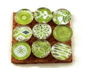 Funky Push Pins  Decorative Push Pins Thumb Tacks Cork Board Pins in The Greens (P31)