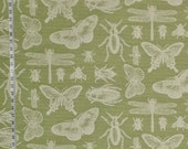Bug fabric insect fabric green bug fabric dragonfly fabric green bugs green insects home decor modern cottage  FREE SHIPPING  1 yd