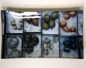 Decoupage Glass Tray with Bird Eggs