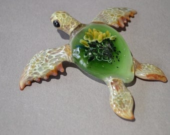 Green Sea Turtle with a colored Anemone inside the shell