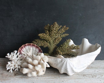 Antique Olive Green Vintage Faux Coral Chunk, Rubber Sea Life, Vintage Maritime Display Nautical