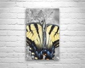 Butterfly Wall Art, Nature Photography, Insect Art, Spring Yellow, Cute Animals, Cute Art, Butterfly Photography, Swallowtail Butterfly