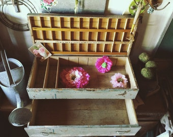 Antique  Rare Primitive Wood Flower Seed Display Chest Cabinet Salesman Traveling Trunk