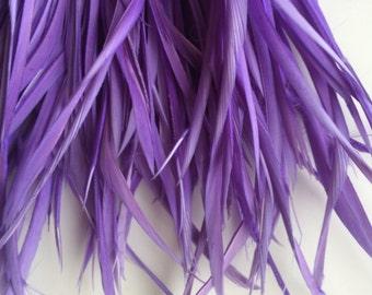 GOOSE BIOT VOGUE,  Violet, lavender  Purple  / 704