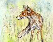 Red Fox Art by Elle J. Wilson