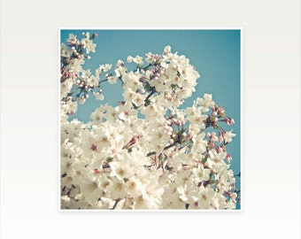 Cherry Blossom Art print, Floral Wall Art - Buds in May