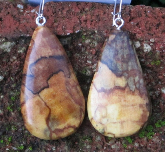 Earrings in Rare Incredible Wood   Boho Natural  Wood 2 in.  tall.Jewelry  (060)