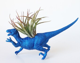 Large Dinosaur Planter with Air Plant Room Decor, College Dorm Ornament, Plants and Edibles, Metallic Blue